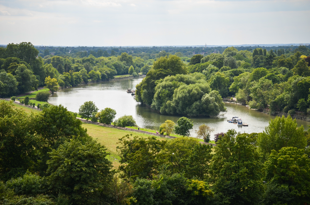 The Thames at Richmond.