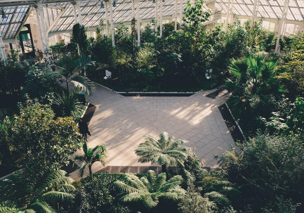 Enjoy a awe-inspiring afternoon at Kew Gardens