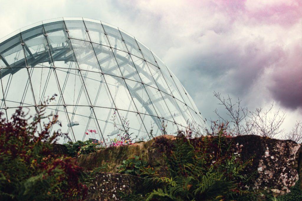 kew gardens autumn in London